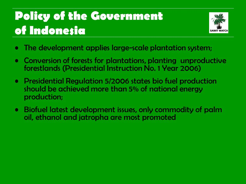 Policy of the Government of Indonesia The development applies large-scale plantation system; Conversion of forests for plantations, planting unproductive forestlands (Presidential Instruction No.