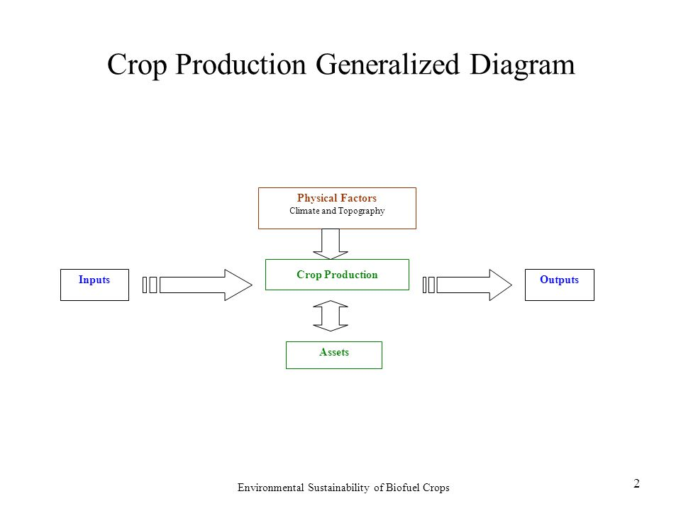 Environmental Sustainability of Biofuel Crops 2 Crop Production Generalized Diagram InputsOutputs Crop Production Physical Factors Climate and Topography Assets