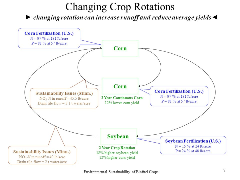 Environmental Sustainability of Biofuel Crops 7 Changing Crop Rotations ► changing rotation can increase runoff and reduce average yields◄ Corn Sustainability Issues (Minn.) NO 3 -N in runoff = 45.5 lb/acre Drain tile flow = 3.1 t water/acre 2 Year Crop Rotation 18% higher soybean yield 12% higher corn yield 2 Year Continuous Corn 12% lower corn yield Sustainability Issues (Minn.) NO 3 -N in runoff = 40 lb/acre Drain tile flow = 2 t water/acre Soybean Fertilization (U.S.) N = 15 % at 24 lb/acre P = 24 % at 48 lb/acre Corn Fertilization (U.S.) N = 97 % at 131 lb/acre P = 81 % at 57 lb/acre Soybean Corn Corn Fertilization (U.S.) N = 97 % at 131 lb/acre P = 81 % at 57 lb/acre