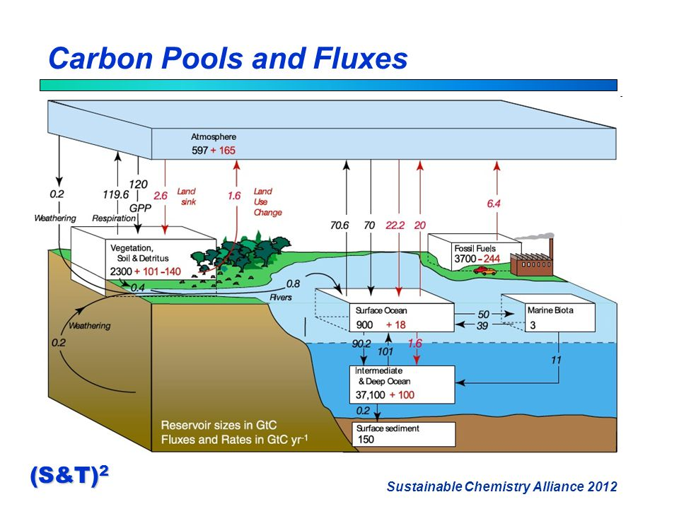 Sustainable Chemistry Alliance 2012 (S&T) 2 Carbon Pools and Fluxes
