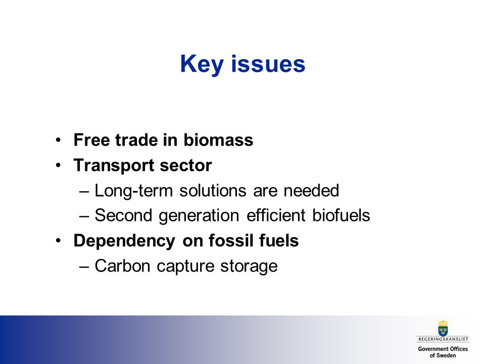 Key issues Free trade in biomass Transport sector –Long-term solutions are needed –Second generation efficient biofuels Dependency on fossil fuels –Carbon capture storage