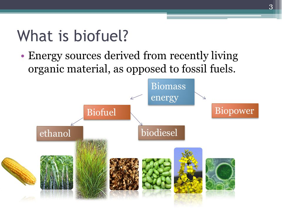What is biofuel.