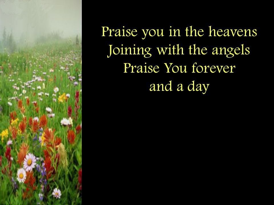 Praise you in the heavens Joining with the angels Praise You forever and a day