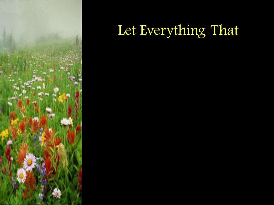 Let Everything That
