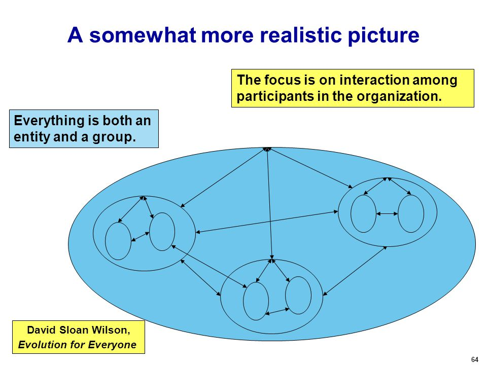 64 A somewhat more realistic picture The focus is on interaction among participants in the organization.