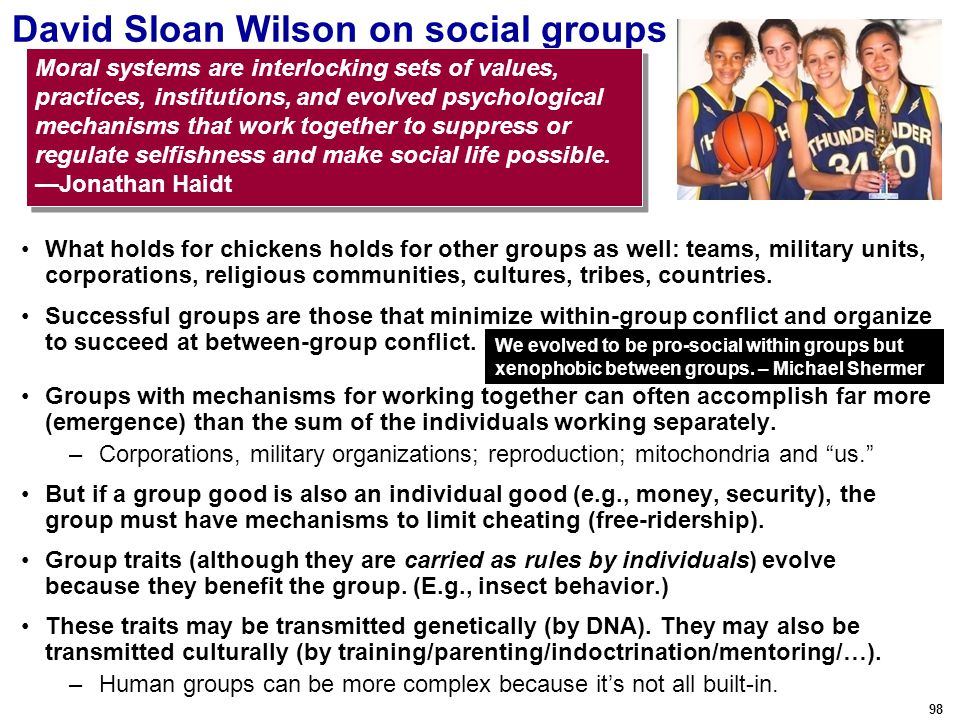98 David Sloan Wilson on social groups What holds for chickens holds for other groups as well: teams, military units, corporations, religious communities, cultures, tribes, countries.