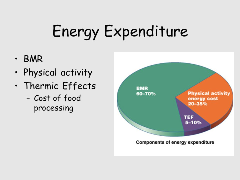 Energy Expenditure BMR Physical activity Thermic Effects –Cost of food processing