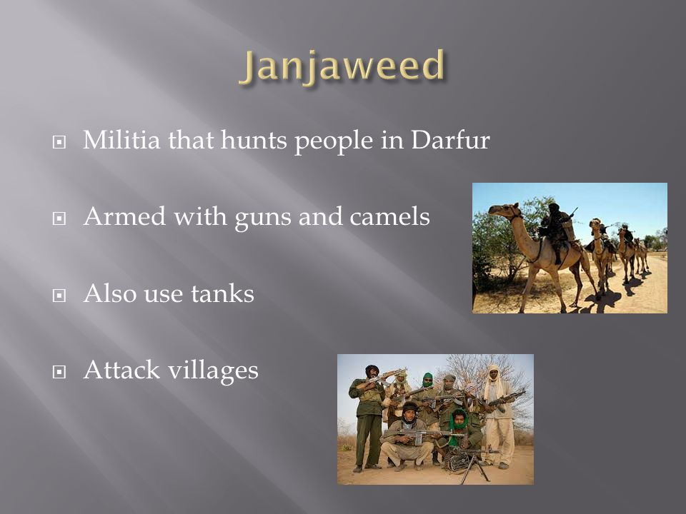  Militia that hunts people in Darfur  Armed with guns and camels  Also use tanks  Attack villages