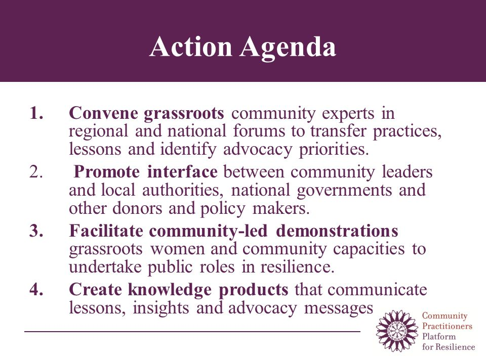 Action Agenda 1.Convene grassroots community experts in regional and national forums to transfer practices, lessons and identify advocacy priorities.