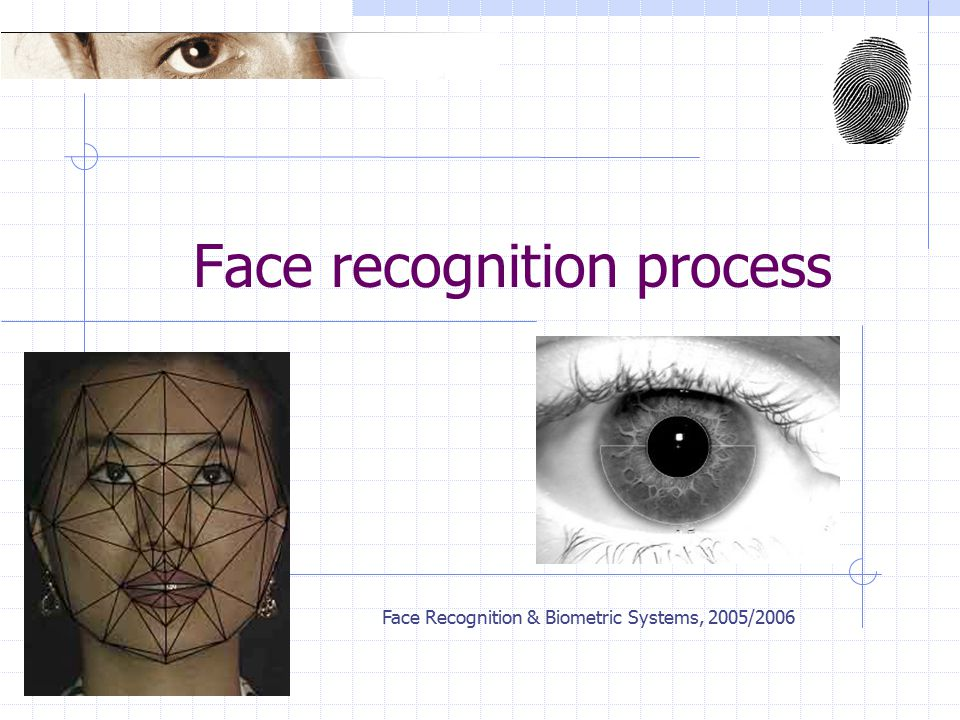 Face Recognition & Biometric Systems, 2005/2006 Face recognition process