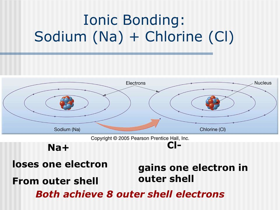 Ionic Bonding: Sodium (Na) + Chlorine (Cl) Na+ loses one electron From outer shell Cl- gains one electron in outer shell Both achieve 8 outer shell electrons