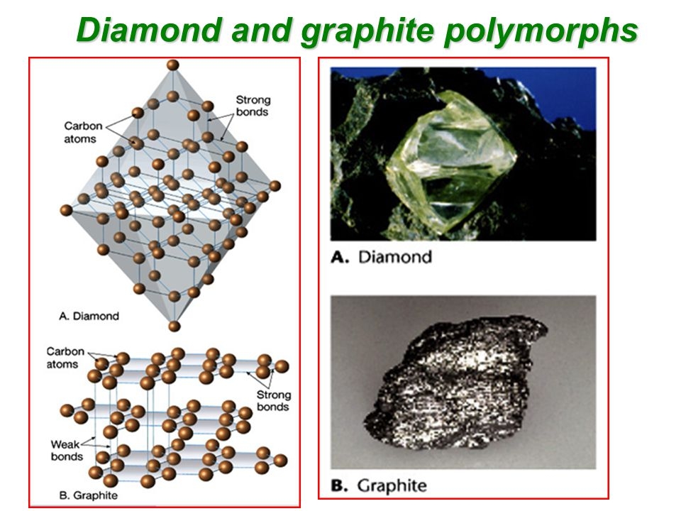 Diamond and graphite polymorphs