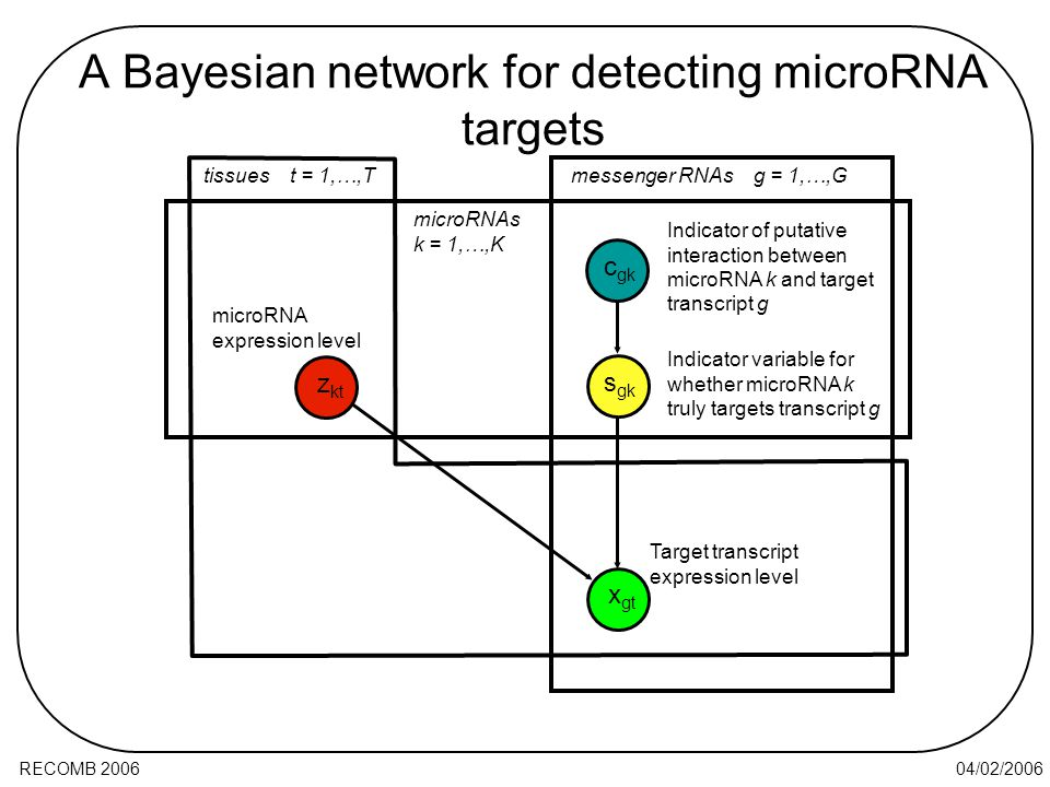 04/02/2006RECOMB 2006 A Bayesian network for detecting microRNA targets Indicator variable for whether microRNA k truly targets transcript g microRNA expression level Target transcript expression level Indicator of putative interaction between microRNA k and target transcript g x gt z kt s gk c gk tissues t = 1,…,T microRNAs k = 1,…,K messenger RNAs g = 1,…,G