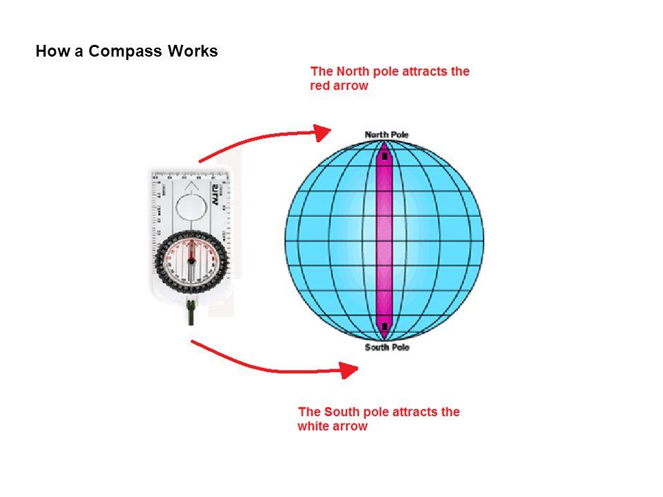 Ne E Se S Sw W Nw Silva Compass Parts Ppt Download