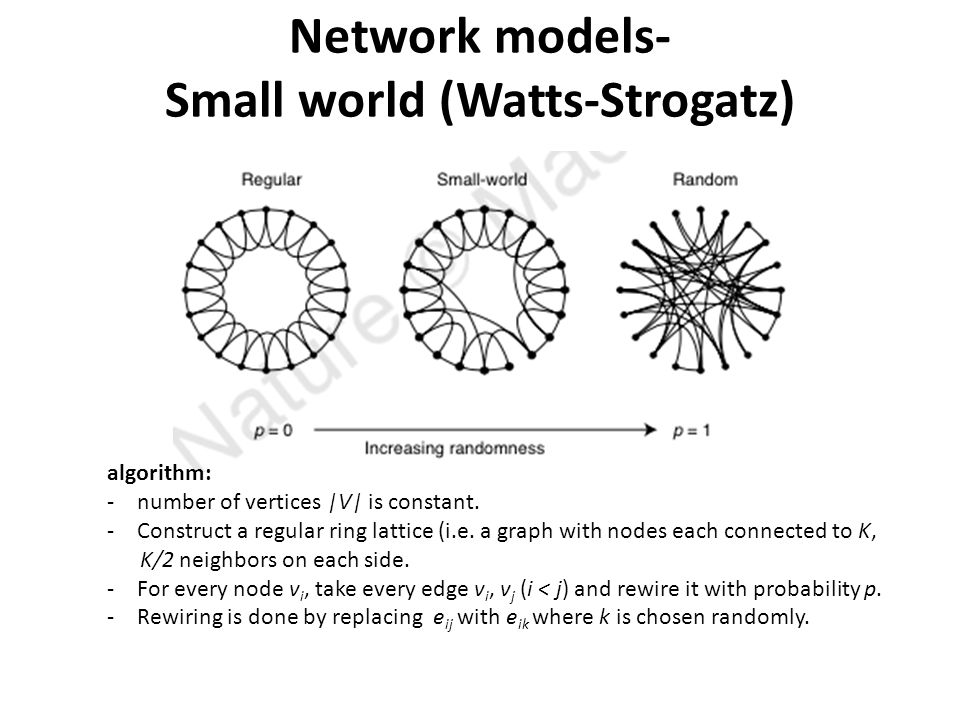 Network models- Small world (Watts-Strogatz) algorithm: -number of vertices |V| is constant.