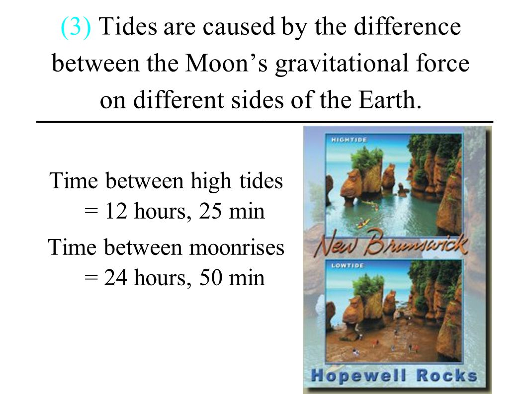 (3) Tides are caused by the difference between the Moon's gravitational force on different sides of the Earth.