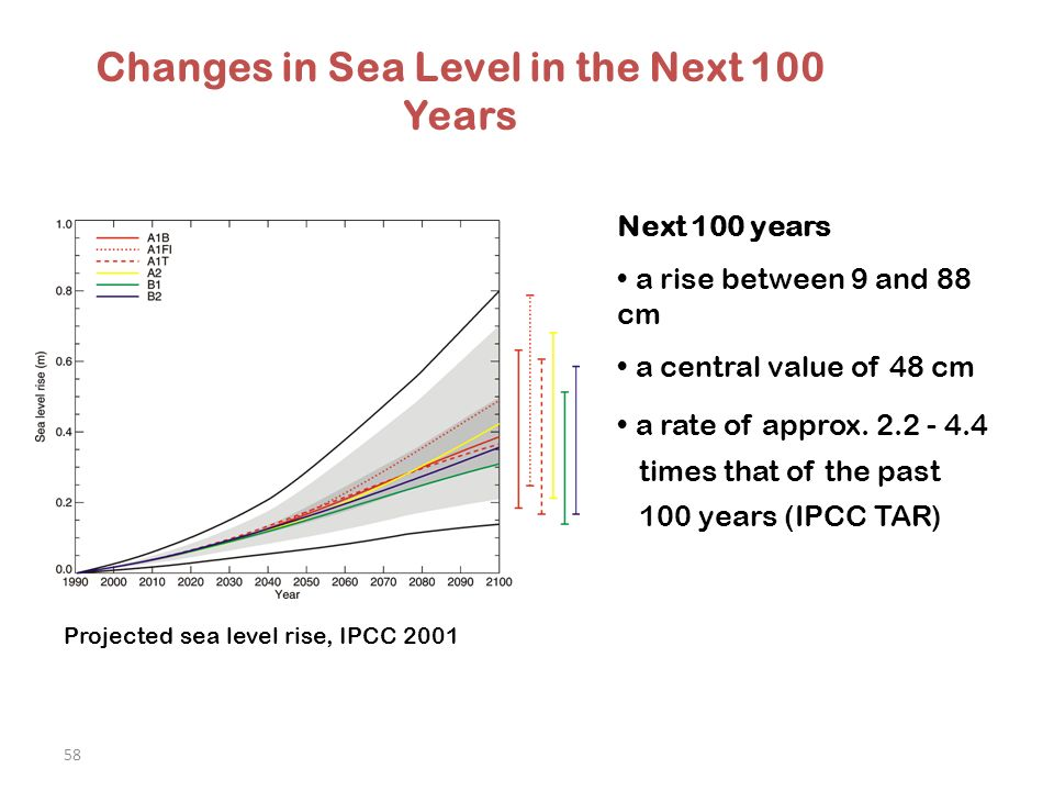 58 Changes in Sea Level in the Next 100 Years Next 100 years a rise between 9 and 88 cm a central value of 48 cm a rate of approx.