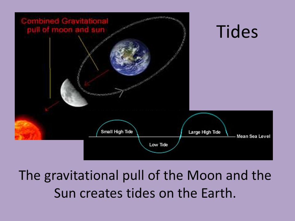 Tides The gravitational pull of the Moon and the Sun creates tides on the Earth.