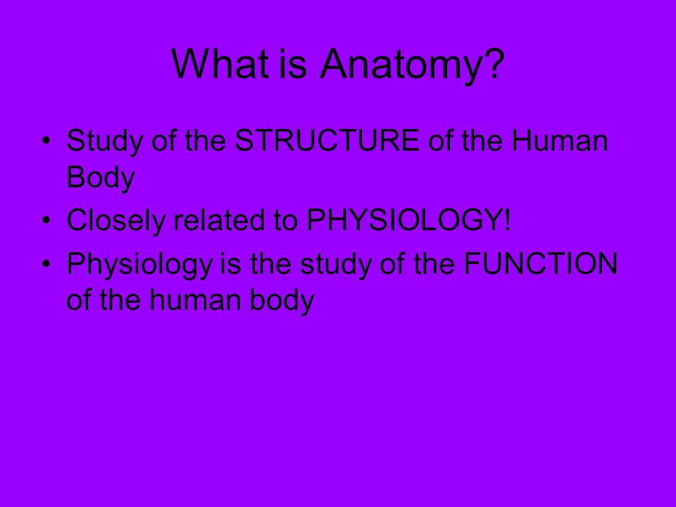 Human Anatomy Introduction What Is Anatomy Study Of The Structure