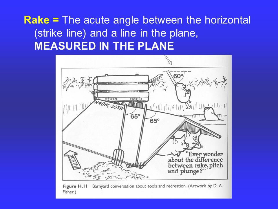 Rake = The acute angle between the horizontal (strike line) and a line in the plane, MEASURED IN THE PLANE