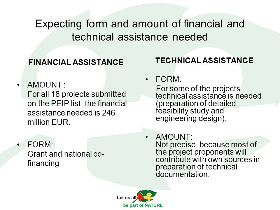 Expecting form and amount of financial and technical assistance needed FINANCIAL ASSISTANCE AMOUNT : For all 18 projects submitted on the PEIP list, the financial assistance needed is 246 million EUR.