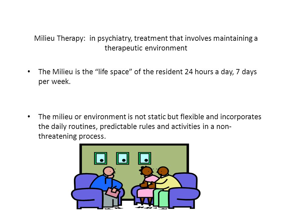 13 Milieu Therapy: in psychiatry, treatment that involves maintaining a therapeutic environment The Milieu is the life space of the resident 24 hours a day, 7 days per week.