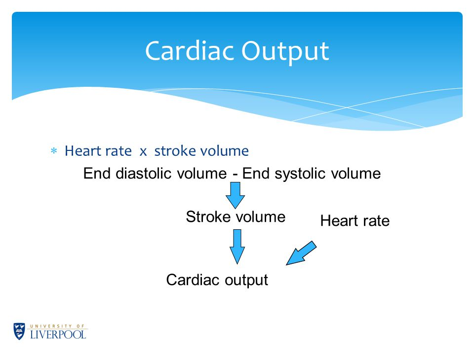 Cardiac Output  Heart rate x stroke volume End diastolic volume - End systolic volume Stroke volume Heart rate Cardiac output