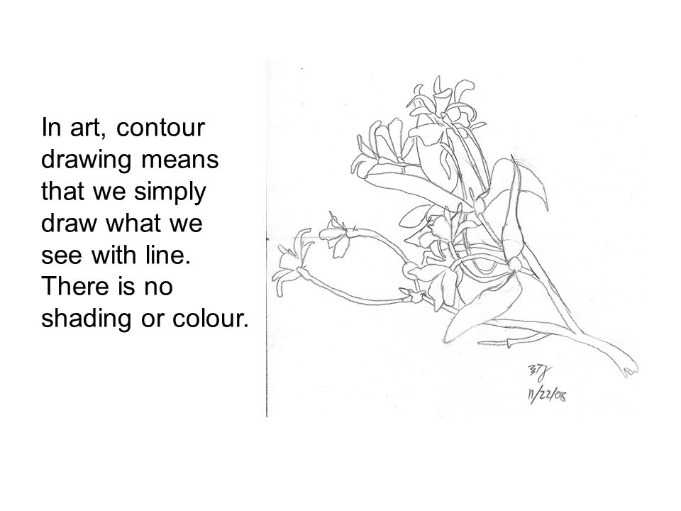 In art, contour drawing means that we simply draw what we see with line.