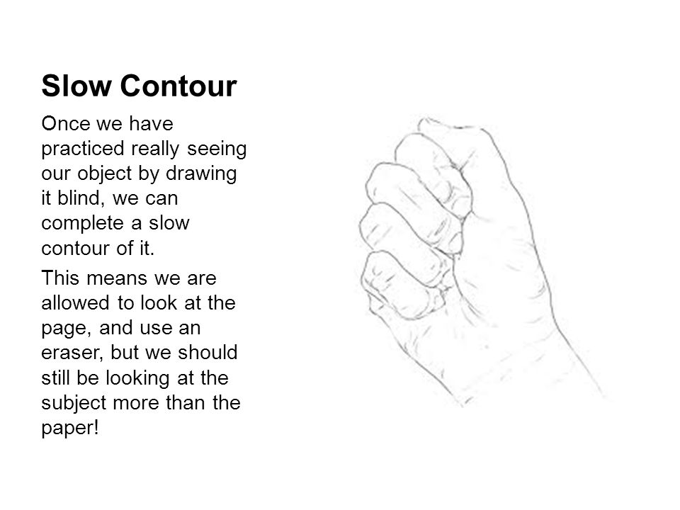 Slow Contour Once we have practiced really seeing our object by drawing it blind, we can complete a slow contour of it.