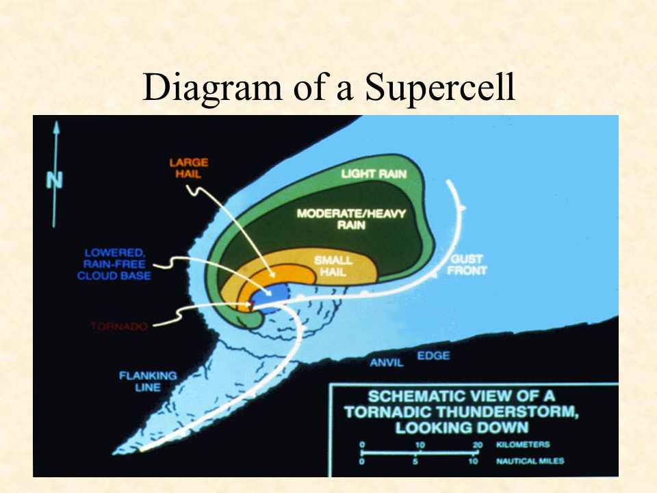 Lecture 13 1125 Severe Storms Severe Storm A Thunderstorm Must