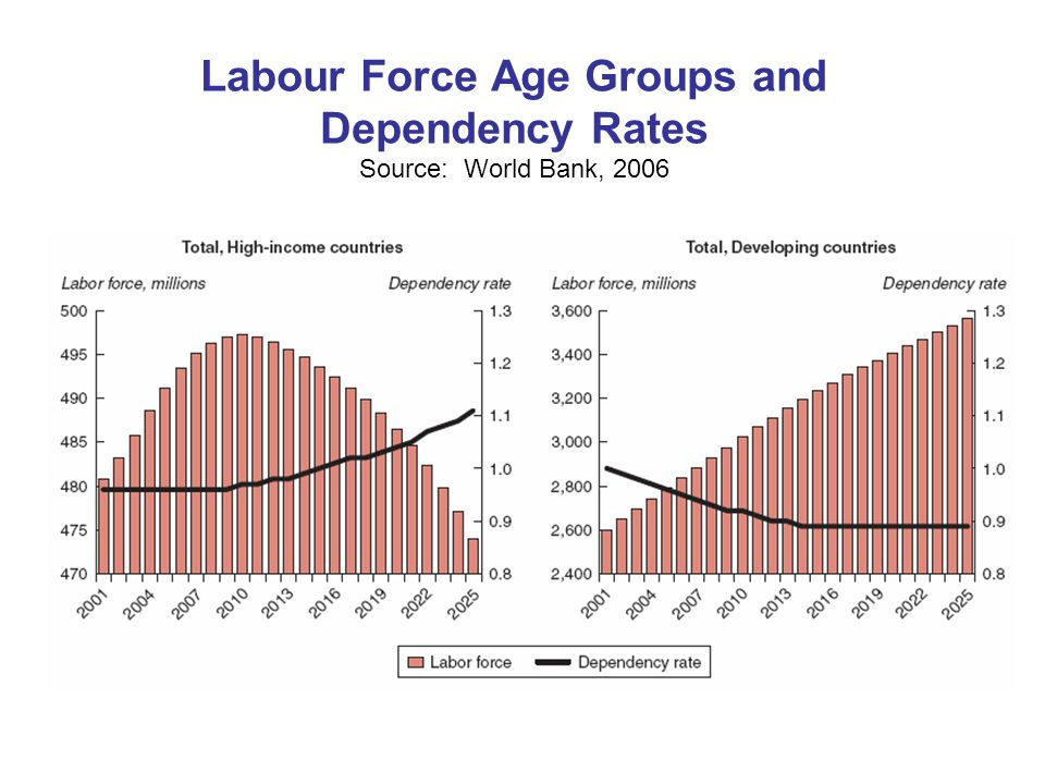 Labour Force Age Groups and Dependency Rates Source: World Bank, 2006