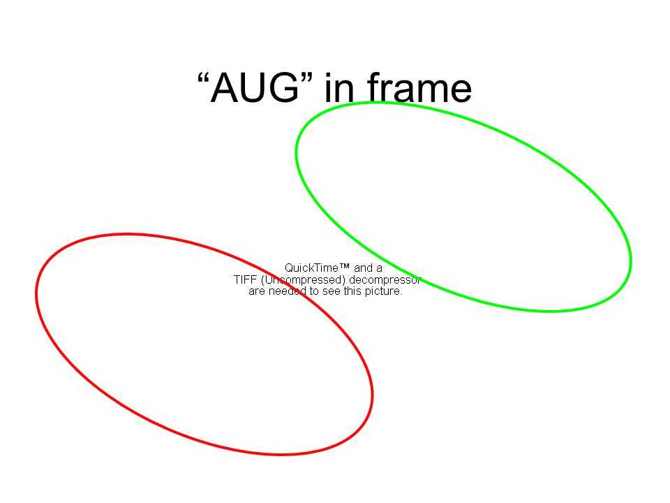 AUG in frame