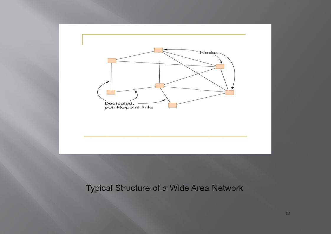 Typical Structure of a Wide Area Network 18