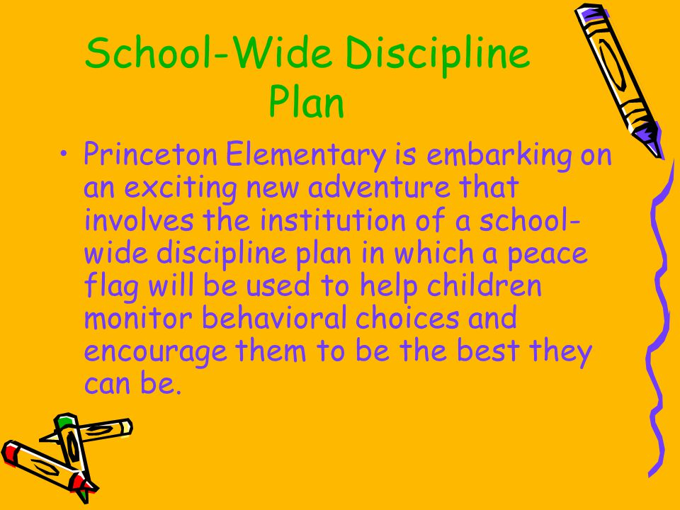 School-Wide Discipline Plan Princeton Elementary is embarking on an exciting new adventure that involves the institution of a school- wide discipline plan in which a peace flag will be used to help children monitor behavioral choices and encourage them to be the best they can be.