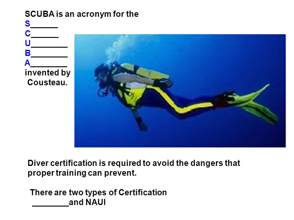 The World Of Recreational Diving Scuba Is An Acronym For The
