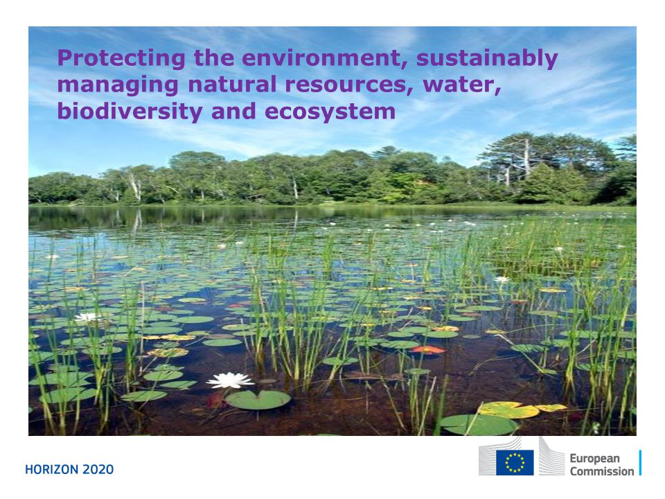 Protecting the environment, sustainably managing natural resources, water, biodiversity and ecosystem