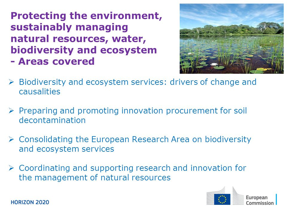 Protecting the environment, sustainably managing natural resources, water, biodiversity and ecosystem - Areas covered  Biodiversity and ecosystem services: drivers of change and causalities  Preparing and promoting innovation procurement for soil decontamination  Consolidating the European Research Area on biodiversity and ecosystem services  Coordinating and supporting research and innovation for the management of natural resources