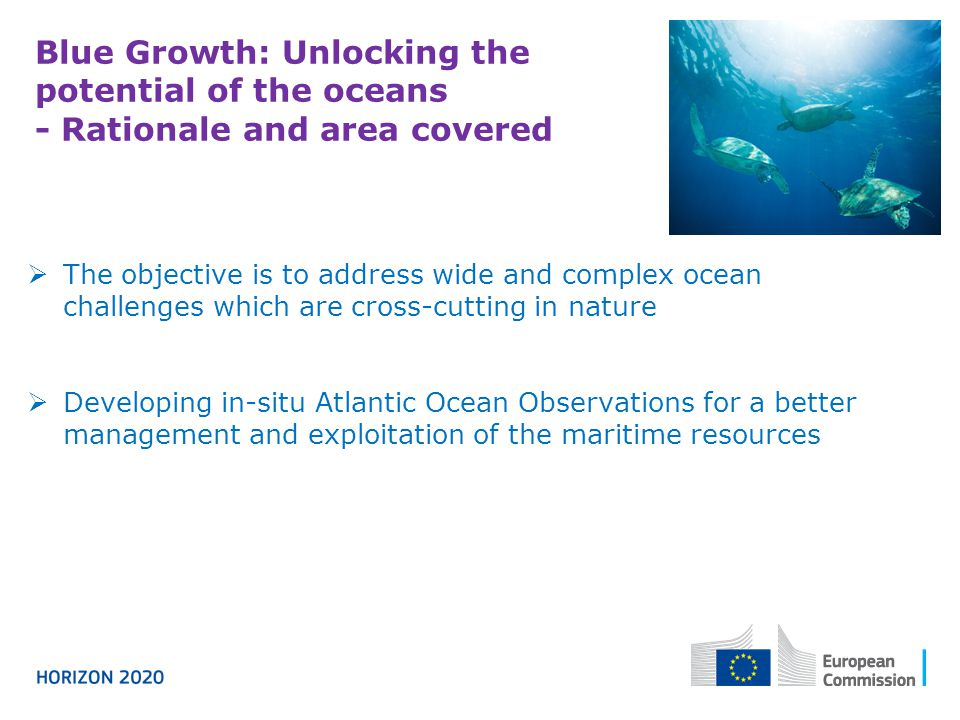 Blue Growth: Unlocking the potential of the oceans - Rationale and area covered  The objective is to address wide and complex ocean challenges which are cross-cutting in nature  Developing in-situ Atlantic Ocean Observations for a better management and exploitation of the maritime resources