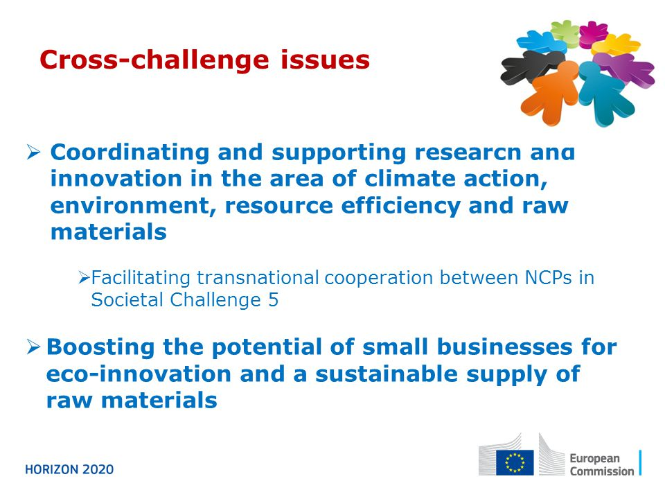  Coordinating and supporting research and innovation in the area of climate action, environment, resource efficiency and raw materials  Facilitating transnational cooperation between NCPs in Societal Challenge 5  Boosting the potential of small businesses for eco-innovation and a sustainable supply of raw materials