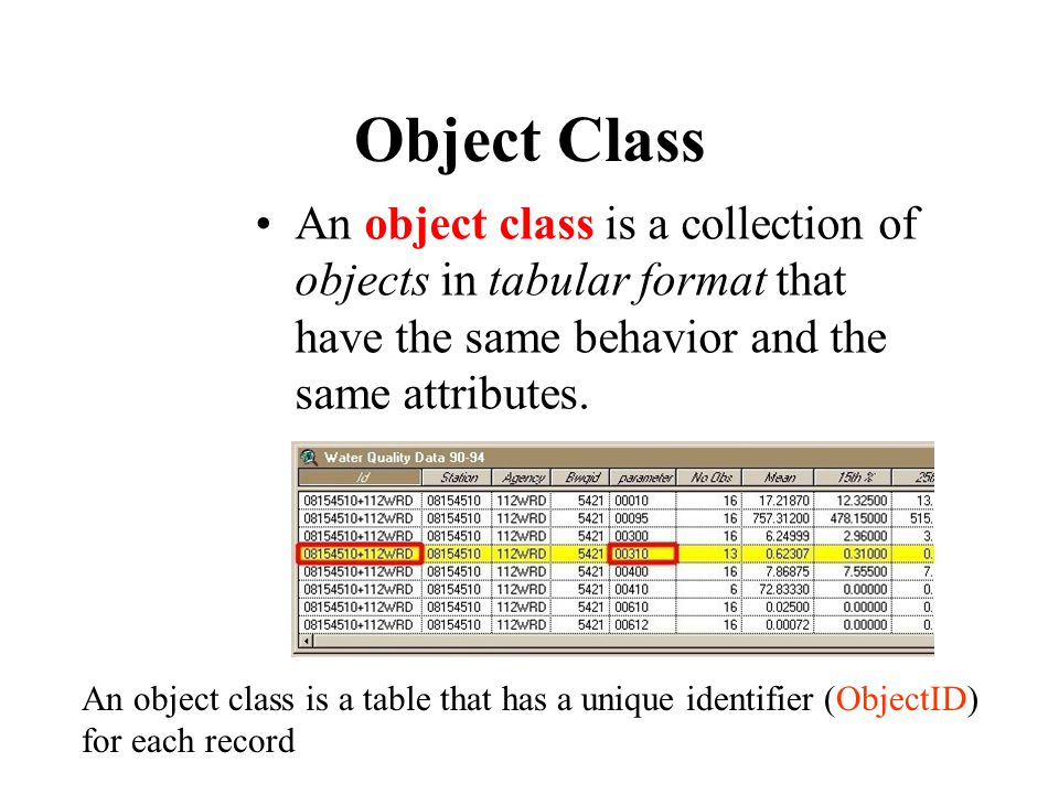 Object Class An object class is a collection of objects in tabular format that have the same behavior and the same attributes.