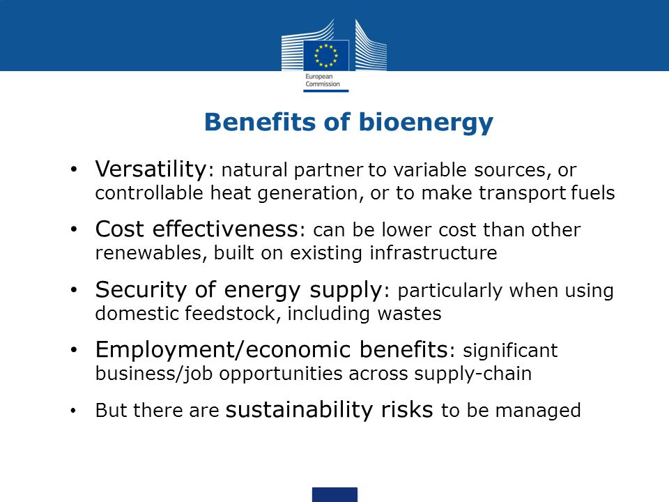 Benefits of bioenergy Versatility : natural partner to variable sources, or controllable heat generation, or to make transport fuels Cost effectiveness : can be lower cost than other renewables, built on existing infrastructure Security of energy supply : particularly when using domestic feedstock, including wastes Employment/economic benefits : significant business/job opportunities across supply-chain But there are sustainability risks to be managed