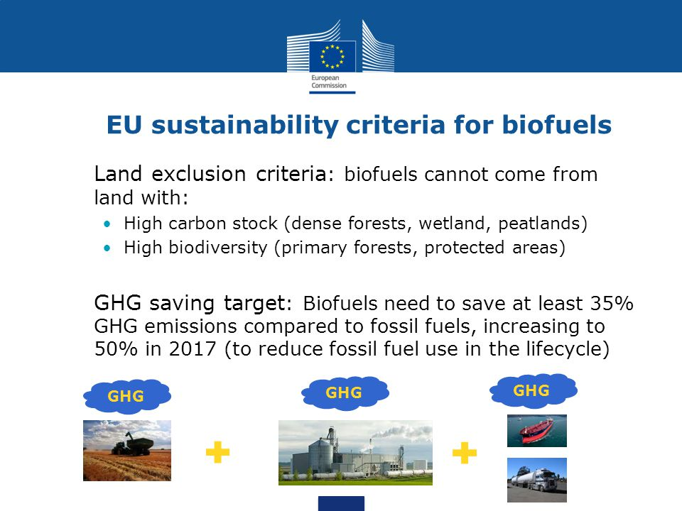 EU sustainability criteria for biofuels Land exclusion criteria : biofuels cannot come from land with: High carbon stock (dense forests, wetland, peatlands) High biodiversity (primary forests, protected areas) GHG saving target : Biofuels need to save at least 35% GHG emissions compared to fossil fuels, increasing to 50% in 2017 (to reduce fossil fuel use in the lifecycle) GHG