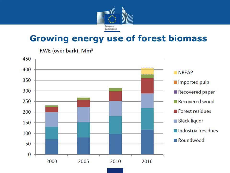 Growing energy use of forest biomass