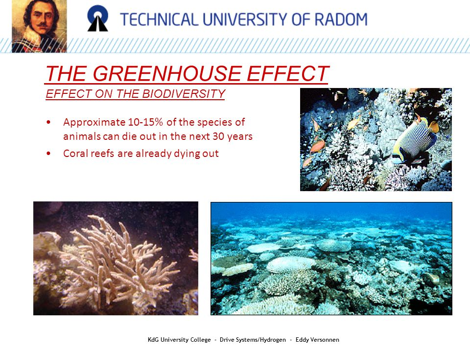 R EFFECT ON THE BIODIVERSITY QUALITY THE GREENHOUSE EFFECT KdG University College - Drive Systems/Hydrogen - Eddy Versonnen Approximate 10-15% of the species of animals can die out in the next 30 years Coral reefs are already dying out