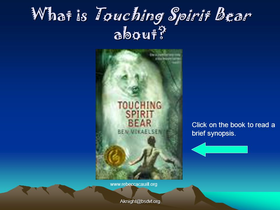 What is Touching Spirit Bear about.