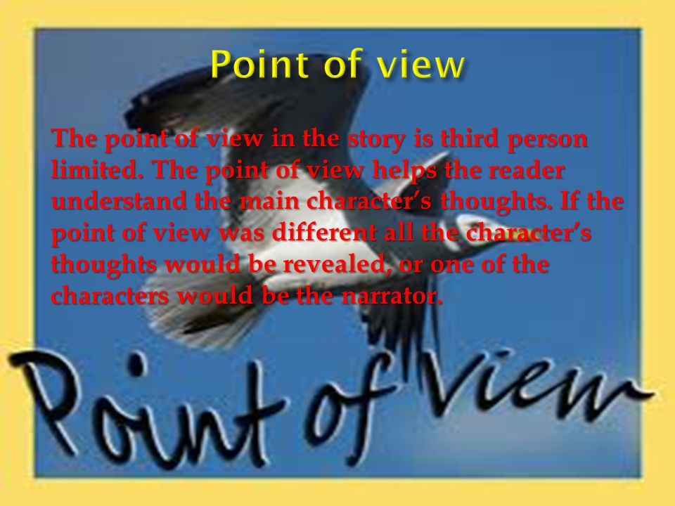 The point of view in the story is third person limited.