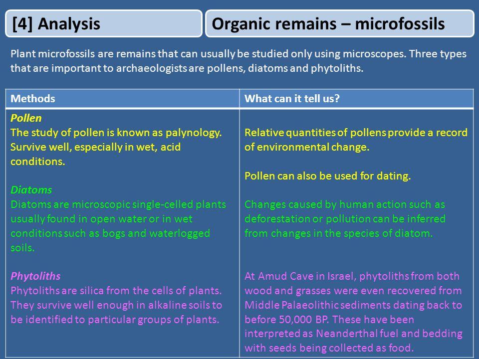 phytoliths dating