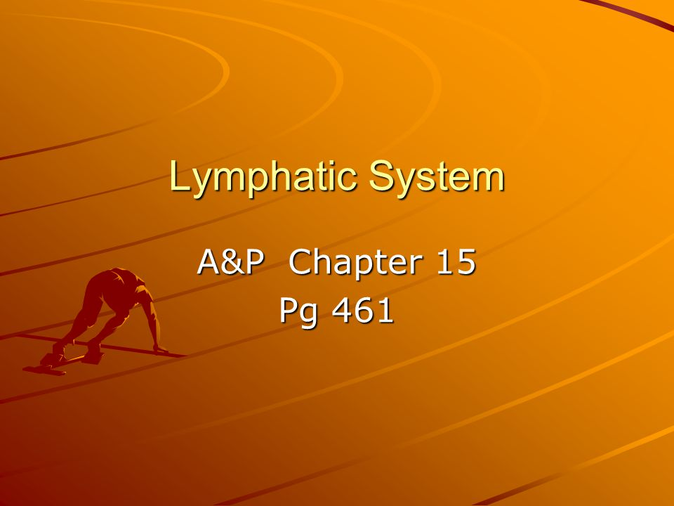 Lymphatic System A&P Chapter 15 Pg 461