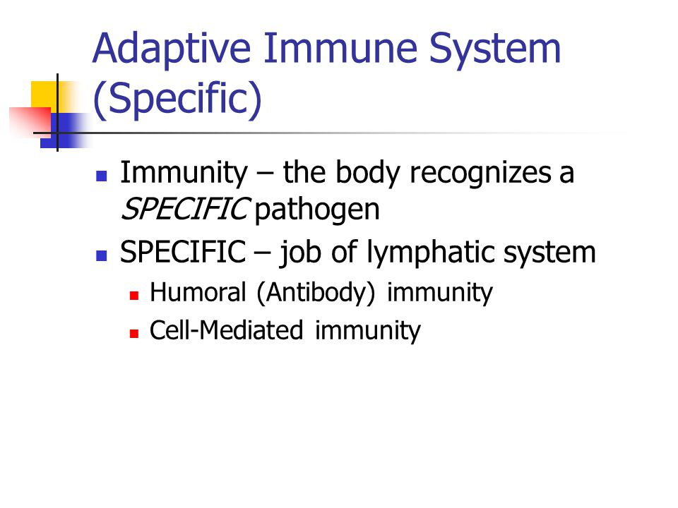 Adaptive Immune System (Specific) Immunity – the body recognizes a SPECIFIC pathogen SPECIFIC – job of lymphatic system Humoral (Antibody) immunity Cell-Mediated immunity