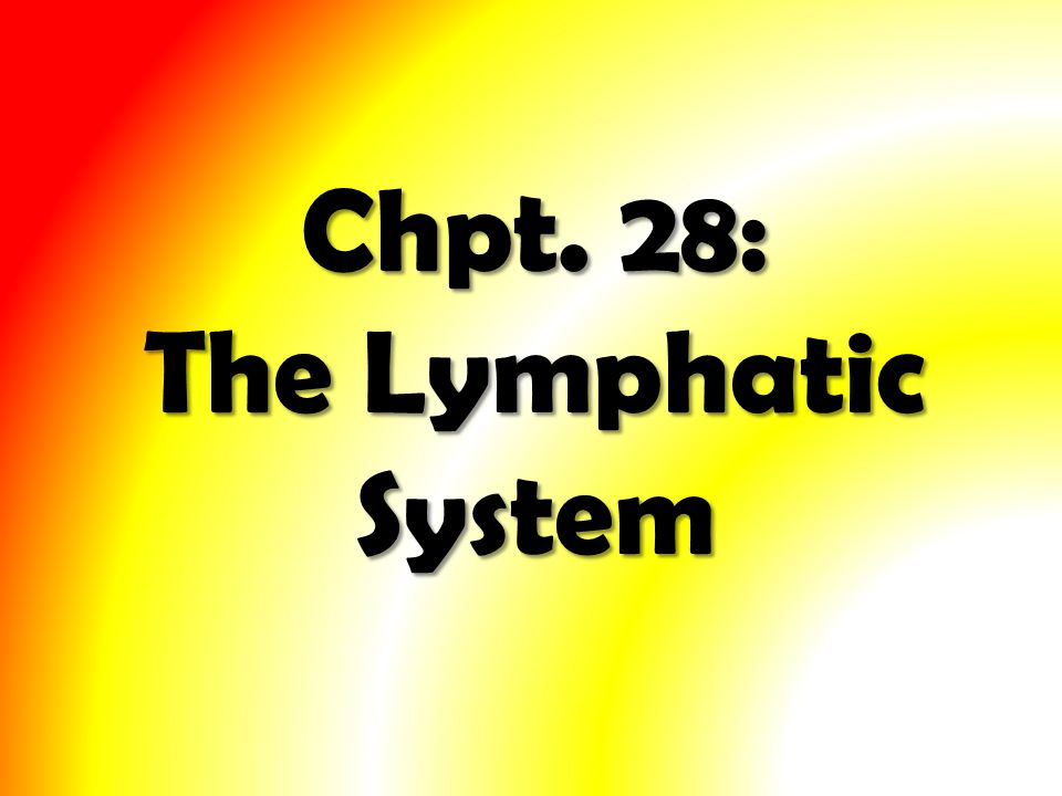 Chpt. 28: The Lymphatic System